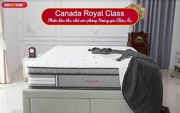 Đệm lò xo Canada Royal Class